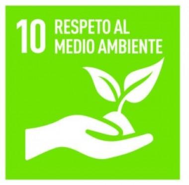 Dibujo del principio del respeto al medio ambiente