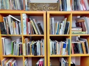 Biblioteca de SETEM